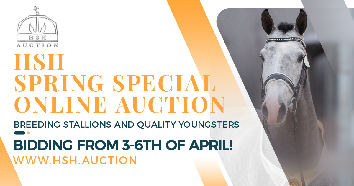 HSH Auction Fb ADV 2021