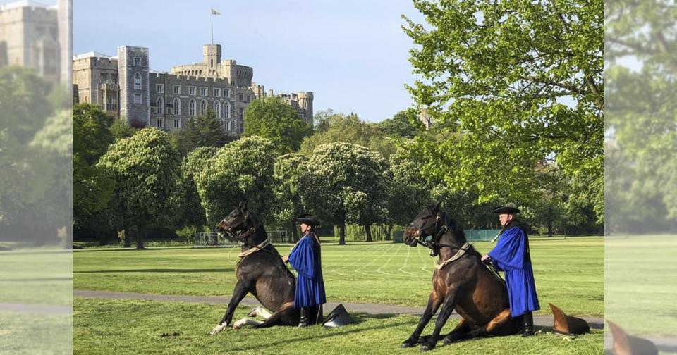 Royalwindsor Kiemelt